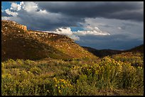 Prater Canyon, afternoon storm. Mesa Verde National Park, Colorado, USA. (color)