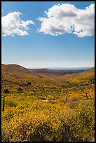 Clouds and landscape with fall colors. Mesa Verde National Park ( color)