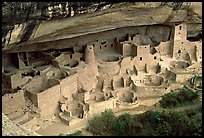 Cliff Palace sheltered by rock overhang. Mesa Verde National Park, Colorado, USA.