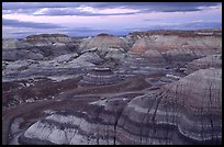 Multi-hued badlands of Blue Mesa, sunset. Petrified Forest National Park, Arizona, USA.