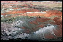 Painted Desert, morning. Petrified Forest National Park ( color)