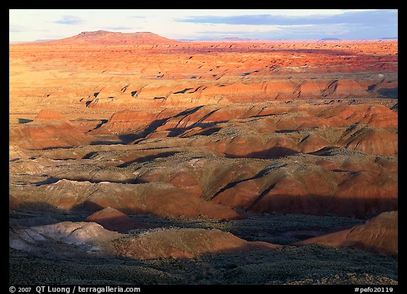Painted Desert, early morning. Petrified Forest National Park (color)