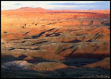 Painted Desert, early morning. Petrified Forest National Park ( color)