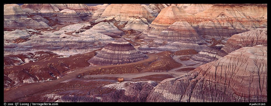 Blue Mesa colored badlands. Petrified Forest National Park (color)