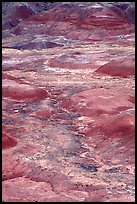 Red hills of  Painted desert seen from Tawa Point. Petrified Forest National Park, Arizona, USA.