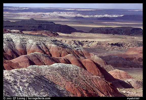Painted desert seen from Lacey Point, morning. Petrified Forest National Park (color)