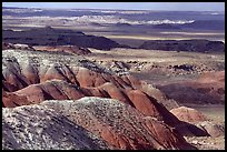 Painted desert seen from Lacey Point, morning. Petrified Forest National Park, Arizona, USA.