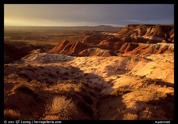 Badlands of  Chinle Formation seen from Whipple Point, stormy sunset. Petrified Forest National Park (color)