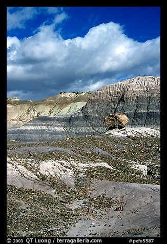 Blue Mesa badlands and pedestal fossilized log, afternoon. Petrified Forest National Park, Arizona, USA.