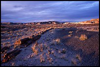 Last light, Long Logs area, sunset. Petrified Forest National Park, Arizona, USA.