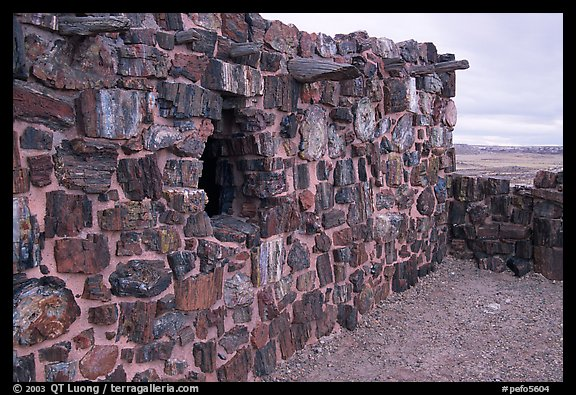 Agate House built with fossilized wood. Petrified Forest National Park (color)