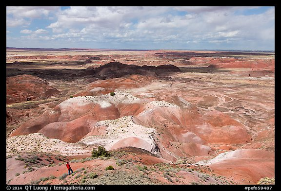 Visitor looking, Painted Desert near Tawa Point. Petrified Forest National Park (color)
