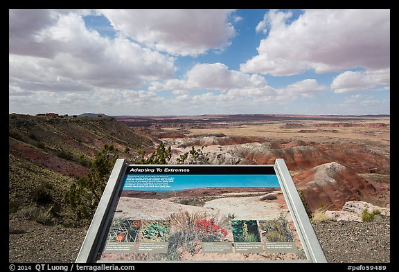Interpretive sign, Painted Desert near Tawa Point. Petrified Forest National Park (color)