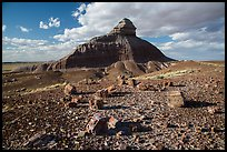 Petrified wood and Salomons Throne. Petrified Forest National Park ( color)