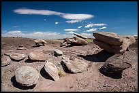Concretion rocks, Painted Desert. Petrified Forest National Park ( color)