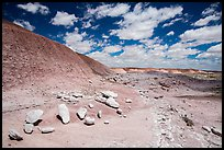 Concretions, Painted Desert badlands. Petrified Forest National Park ( color)