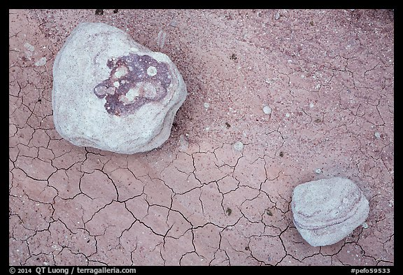 Ground view with concretions and red cracked mud. Petrified Forest National Park (color)