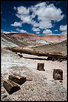 Black petrified wood and Onyx Bridge. Petrified Forest National Park ( color)