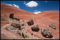 Red Desert badlands hills and black petrified logs. Petrified Forest National Park ( color)