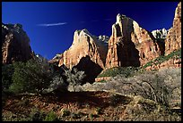 Court of the Patriarchs sandstone towers, morning. Zion National Park, Utah, USA. (color)