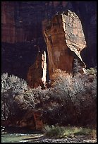 The Pulpit, Zion Canyon. Zion National Park, Utah, USA. (color)