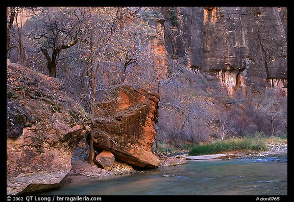 Virgin river at  entrance of the Narrows. Zion National Park, Utah, USA.