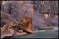 Virgin river at  entrance of the Narrows. Zion National Park, Utah, USA. (color)