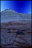 Checkerboard Mesa seen from base, Zion Plateau. Zion National Park, Utah, USA.
