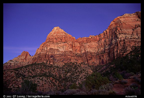 Watchman, sunset. Zion National Park, Utah, USA.
