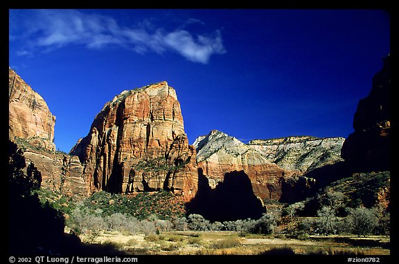Angel Landing. Zion National Park (color)