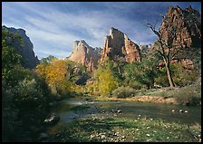 Court of the Patriarchs, Virgin River, and trees in fall color. Zion National Park, Utah, USA.