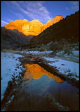 Pine Creek and Towers of  Virgin, sunrise. Zion National Park ( color)