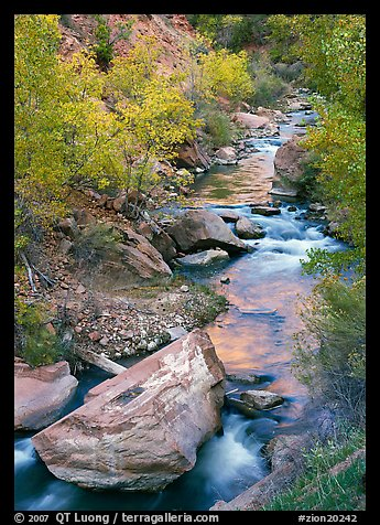Boulders and Virgin River in the fall. Zion National Park (color)