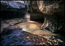 Water flowing in pools in  Subway, Left Fork of the North Creek. Zion National Park, Utah, USA. (color)