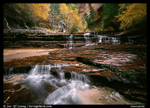 North Creek flowing over red travertine terraces in autumn. Zion National Park (color)