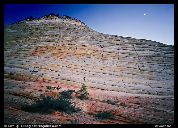 Checkerboard Mesa and moon. Zion National Park (color)