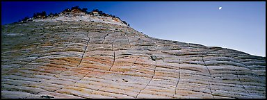 Checkered pattern on Checkboard Mesa. Zion National Park (Panoramic color)