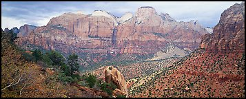 Towers of the Virgin View. Zion National Park (Panoramic color)