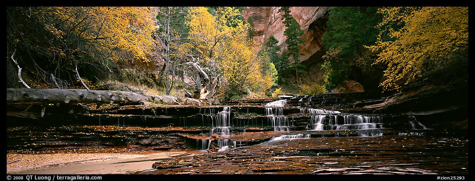 Autumn landscape with terraces flowing over creek. Zion National Park (color)