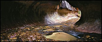 Tunnel-shaped opening of the Subway. Zion National Park (Panoramic color)
