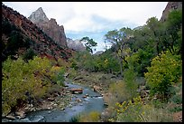 Zion Canyon and Virgin River in the fall. Zion National Park, Utah, USA.