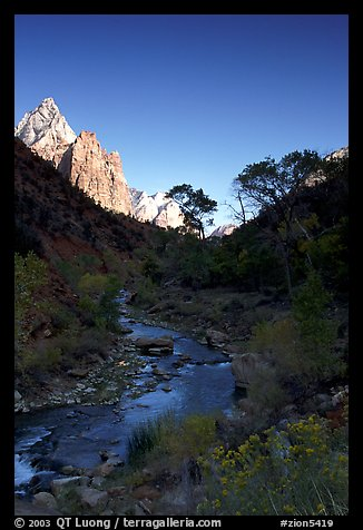 Virgin River and Court of the Patriarchs, early morning. Zion National Park (color)