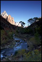 Virgin River and Court of the Patriarchs, early morning. Zion National Park, Utah, USA.