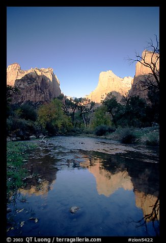 Court of  Patriarchs reflected in the Virgin River, sunrise. Zion National Park, Utah, USA.