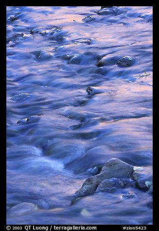 Water flowing over stones in Virgin River. Zion National Park (color)