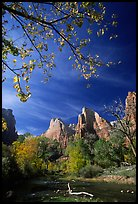 Court of the Patriarchs and Virgin River, mid-day. Zion National Park, Utah, USA. (color)