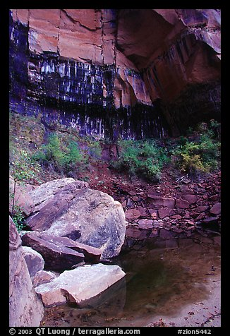 Boulders in  Third Emerald Pool. Zion National Park (color)