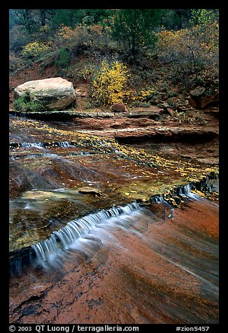Travertine terraced cascades in autum, Left Fork. Zion National Park (color)