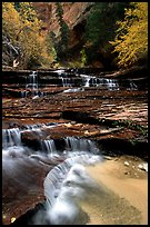 Archangel Falls in autumn, Left Fork of the North Creek. Zion National Park, Utah, USA.
