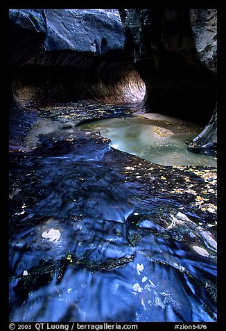 Water flowing in pools in the Subway, Left Fork of the North Creek. Zion National Park (color)